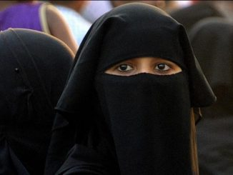 حظر النقاب في الدنمارك