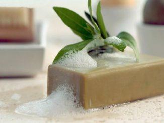صابون الغار