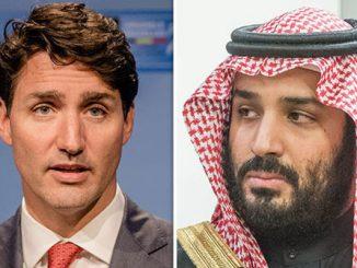 السفير الكندي