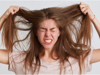 صحة الشعر