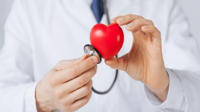 عضلة القلب
